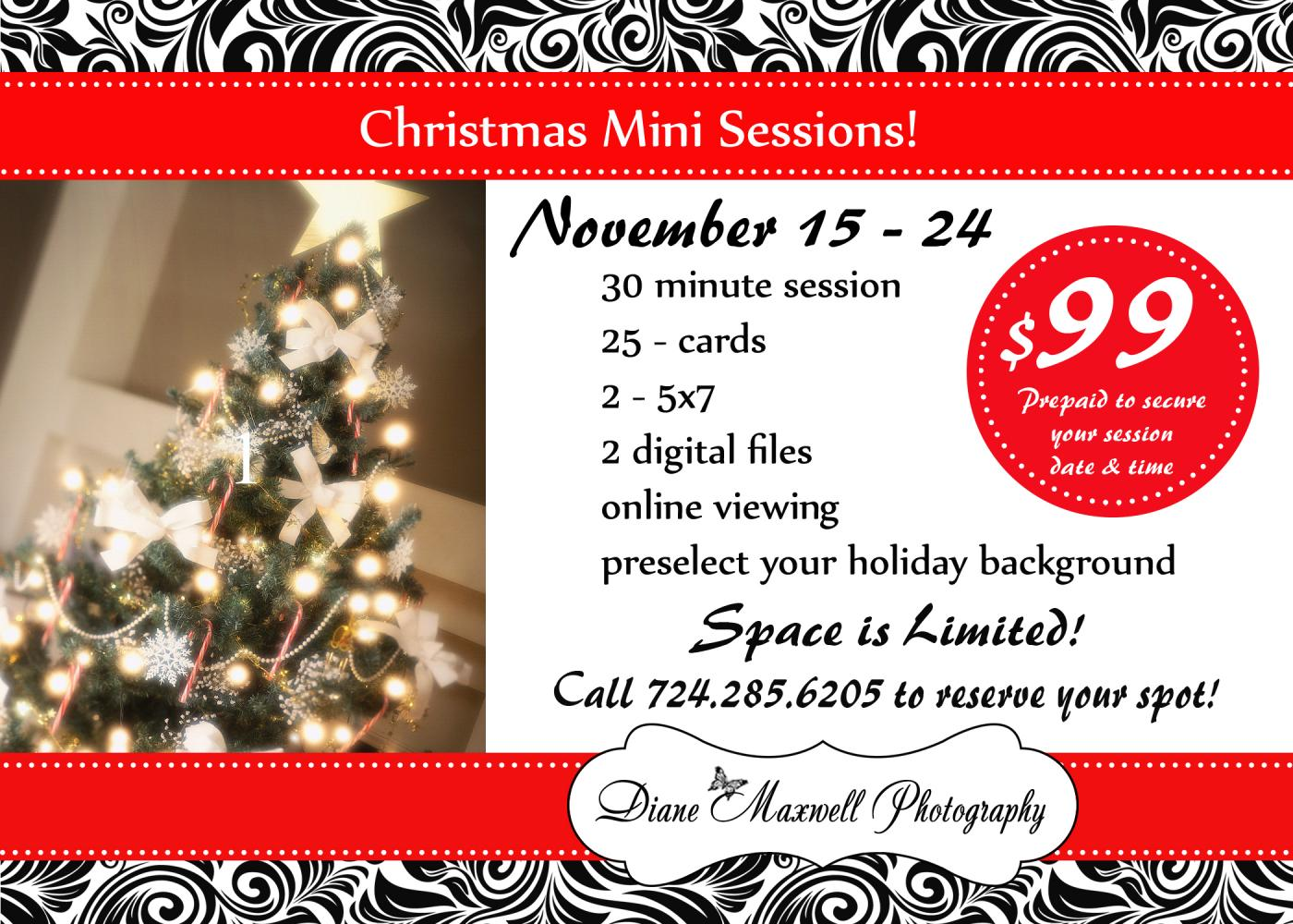 Christmas Mini Sessions from November 15 - 24